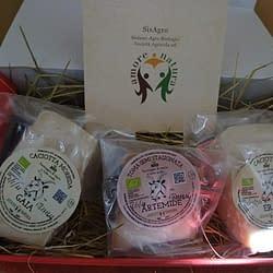 cesto di natale Edoardo con tre formaggi di capra biologici: caciotta morbida, caciotta natuale e toma semistagionatan